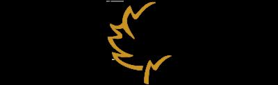 CGT_Logo_RZ