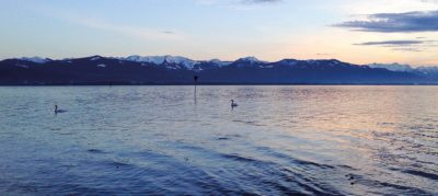 bodensee 7